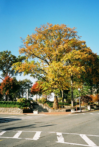 Fall arrives in Van Neste Park, Ridgewood, New Jersey.