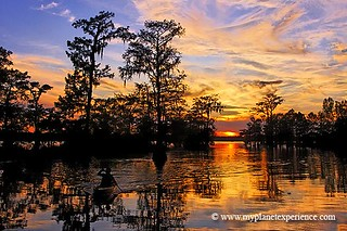 Louisiana experience : Lake Martin sunset