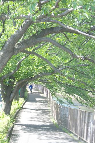 町田樹 画像28