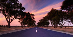 Northwood Road (Kyle Kruchok) Tags: road sunset color canon eos vibrant australia victoria winery outback 1022mm northwood 1122 nagambie 3608 40d
