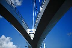 Diemen - Nesciobrug (Stewart Leiwakabessy) Tags: bridge stewart brug diemen noordholland leiwakabessy stewartleiwakabessy photomatix nescio nesciobrug
