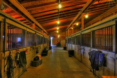 Highmark Farm - Inside the barn