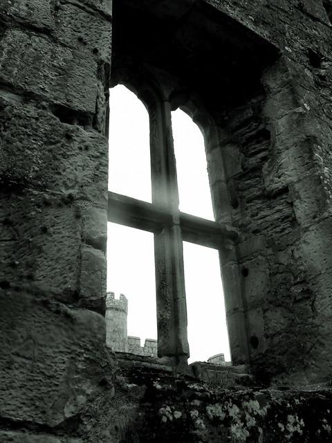 Window (5)