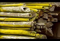 Out of Blues (zilverbat.) Tags: wood travel green texture colors japan bamboo wabisabi hout bamboe planken verweerd bundels tectures stapelen zilverbat tijdenseenwandelingzagikdithout meteenwatongewonekleur