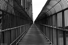 Jail Bridge (dzpixel) Tags: light blackandwhite white black lines canon vanishingpoint noir mtl montreal lumiere blanc jacquescartier dz vanish 550d mywinners t2i theunforgettablepictures samlam dzpixel eos550d rebelt2i eosrebelt2i perpactive