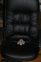 Executive chair, executive Dust Mite