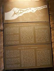la via lactea en la astronomia inca | qorikancha (enricoerriko) Tags: nyc milan mountains rome peru southamerica inca cuzco la lima cusco beijing perù andes machupicchu arequipa italie sacredvalley urubamba incas inkas qorikancha ollantaytambo américadosul saqsayhuaman москва sudamérica oceanopacifico 京 portocivitanova romeparis перу erriko инки enricoerriko inques ペルーgold