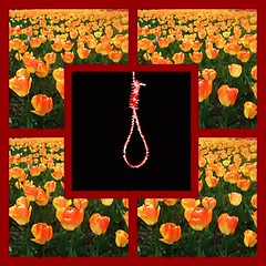 Republic of torture &execution (Hamid M.) Tags: light red orange photoshop hope freedom daylight persian google day darkness angle iran humanity interior fear internet innocent persia disaster jail innocence terror devil iranian tehran tomorrow homeland destroy tomorrows farsi fars demonstartion  fightagainstterror   internetiniran