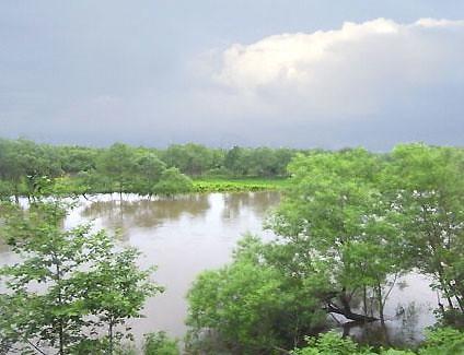 タイ・ナコンサワン/サワン公園