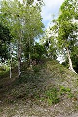 baudchon-baluchon-guatemala-tikal-18