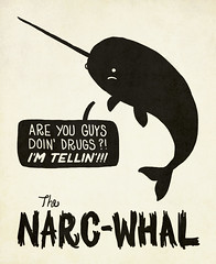 The Narc-Whal (Iain Burke) Tags: autumn fall animals illustration poster typography graphicdesign october rat graphic drawing dumb fat humor drugs type beast whale lettering creatures unicorn beasties snitch seacreatures 2010 narc narcotics blubber typographie tattletale unicornwhale october2010 iainburke octopocalypse narcwhal seabeasties