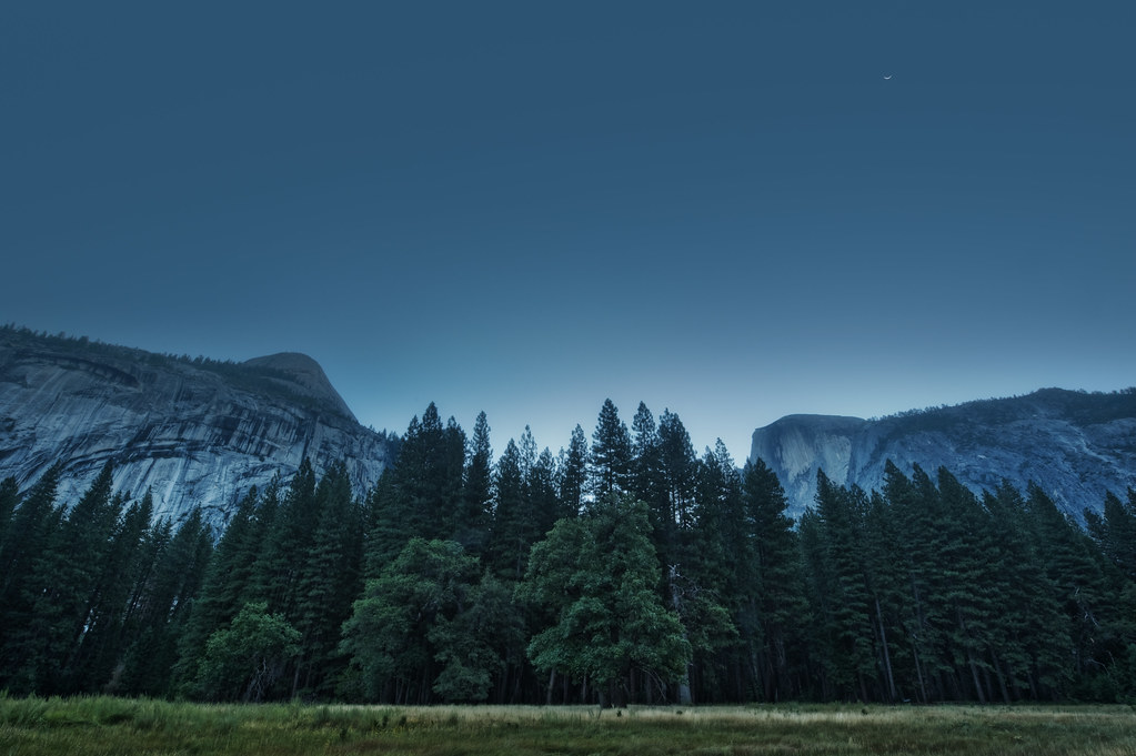 Lunar twilight in the meadows of Yosemite
