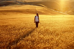 In Fields Of Gold (XTheFisch) Tags: california sunset hot film girl standing 35mm rust energy alone wind jacqueline machinery rusted bayarea livermore rollinghills prettygirl urbanexploring industrialdecay