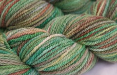 Songs of Forest Creatures on Cestari  Fine Merino Wool - 4 oz. (...a time to dye)