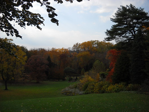 Longwood October 2010 114