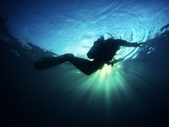 Evening pool dive. (NVenot) Tags: diver scuba diving publicsafetydiver gopro hero 5 hero5 hero5black drysuit dive rescue international erdi fire firefighter fighter