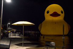 DSC_3994 (Quantum Stalker) Tags: toronto ontario canada 150 day celebration hto park harbourfront rubber duck giant six storey night d600 iso 4000