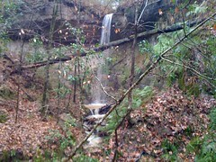 3rd Falls on Primitive Trail