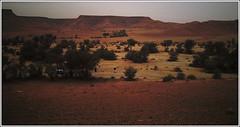 ... (||~ فـراس الفريجـي) Tags: nokia xm بر بدر أخوي xpress صورة الرحمن صحراء 5800 صغير كام جوال قوس كشتة قزح فراس جوالات ذذ الفريجي muisec