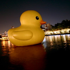 rubber ducky, you're the one (troutfactory) Tags: art yellow japan night digital river giant square duck fantastic artwork dream floating   osaka kansai rubberduck ricoh  inflated  florentijnhofman grd2 floatingduck  aquametropolisosaka
