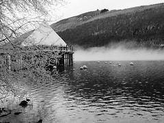 Crannog (Nino.Modugno) Tags: uk greatbritain bw water scotland blackwhite december britain scottish panasonic loch 2009 crannog dwelling lochtay artificialisland blackwhitephotos northernscotland ninomodugno panasonicdmclx3 eugenelapia ifitaintscottishitscrap