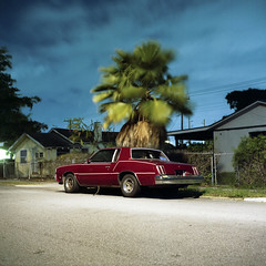 (patrickjoust) Tags: auto street city light red urban usa west color tree 6x6 tlr film beach car night analog america