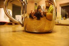 348/365 - I'm a little teapot... ({katesea}) Tags: camera selfportrait reflection me kitchen myself mirror nikon shiny tea teapot project365