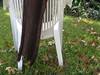 IMG_0555 (Knit newf somali) Tags: yarn sundara