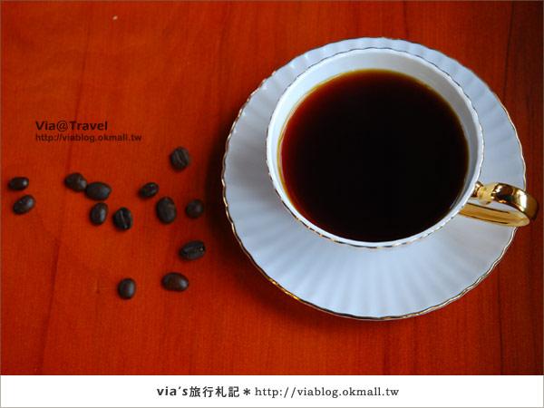 【魔法咖啡屋】Mofa Cafe~在南投國姓鄉來一杯魔法咖啡38