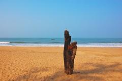 A simple shrine (ra_young) Tags: sea india tree beach shrine goa garland