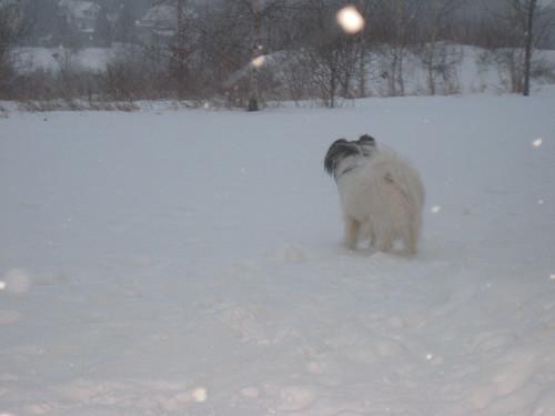 Überall Schnee …