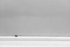 _IGP2500 (orang_asli) Tags: africa shadow sea mer beach water silhouette landscape tanzania coast eau côte ombre zanzibar paysage plage lieux afrique aficionados naturel tanzanie ombreetlumière jambiani géographie effetspécial ombreetlumire c™te gžographie effetspžcial