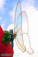 Butterflies come in all Sizes (even sculpted ones) (nrhodesphotos(the_eye_of_the_moment)) Tags: blue sky sculpture butterfly orlando rainforest florida rainforestcafe disneydowntown ysplix nrhodesphotosyahoocom wwwflickrcomphotostheeyeofthemoment theeyemomentphotosbynolanhrhodes img3785nhrt