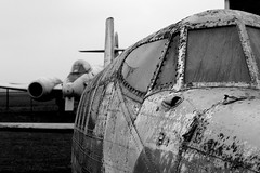 De Havilland (Cathy G) Tags: blackandwhite bw cold broken wet canon aircraft ghostly scrap cracked fiddy depressing dehavilland sleet canon50mm lasham swwaps glostermeteor nowings canon40d
