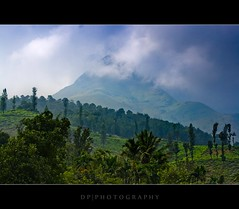 God's Own Country (DP|Photography) Tags: india mountains kerala wayanad westernghats chembrapeak godsowncountry kalpetta hillsofindia