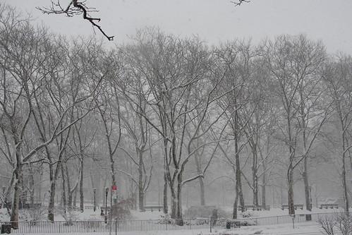 frosty abyss
