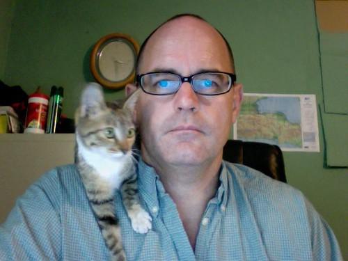 kittens in haiti love kevin