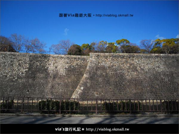 【via關西冬遊記】大阪城天守閣!冬季限定:梅園梅花盛開6