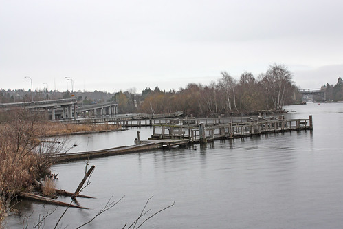 The Arboretum Waterfront Trail