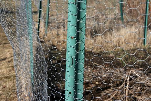 garden fence 020