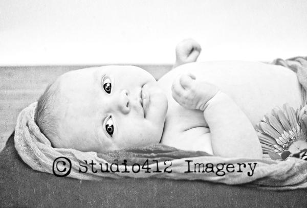 Baby Ainsley {Newborns} Blog