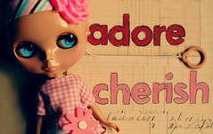 Adore & Cherish - 250/365 ADAD