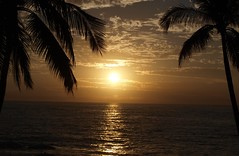Pacific Sunset (Tabby Fan) Tags: sunset mexico puertovallarta impressedbeauty