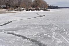 DSC_5019 (deanomac rocks) Tags: ice lakeerie harrow frozenlake