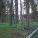 Fenland Trail