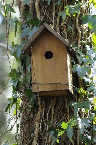 bwcbirdhouse