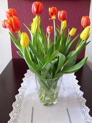 Tulpen aus Amsterdam (ThomasKohler) Tags: flower amsterdam table mirror spiegel vase blume tisch tulpen tulpe straus