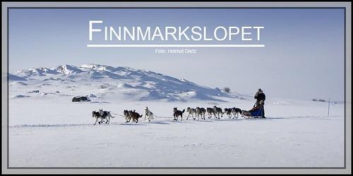 Finnmarkslopet-Foto: Helmut Dietz