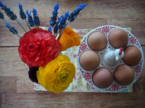 weekend snapshot :: eggs and such...