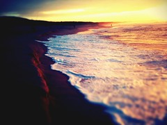 iPhone photo - 174/365 - Sometimes I Wanda (alexkess) Tags: cameraphone morning sun beach yellow sunrise photography early photo wanda flickr surf day phone group wave surfing photoblog mobilephone shire sutherland swell camerabag mobilephonecamera 3gs cronulla iphone tiltshift iphone365 iphoneography iphone3gs tiltshiftgen